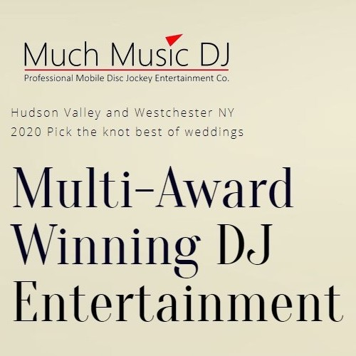 Much Music DJ